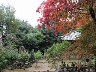 豪商「角倉(かどくら)家」も墓廟を持つ