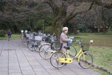<p>What a beautiful yellow bike! I want one too</p>