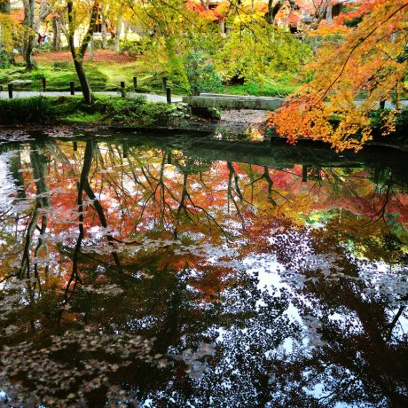 Strolling around Seiryuchi Pond