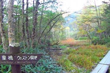 <p>Wooden path in Kamikochi</p>