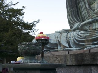 Delicious apples offered to the Daibutsu