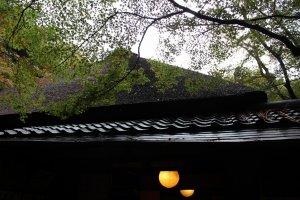 茅葺屋根にかかる紅葉の葉が空に映えて美しい