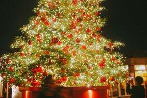 Pohon Natal super besar yang penuh cahaya