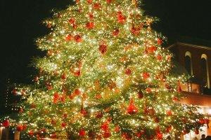 Pohon natal yang gemerlap di Yebisu Garden
