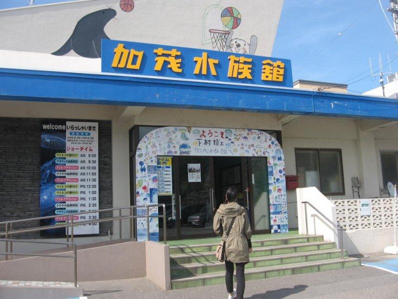 Kamo Aquarium in Tsuruoka - 山形 - Japan Travel - 日本旅游大搜索