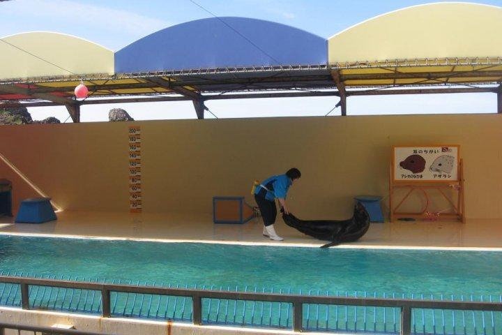 Kamo Aquarium in Tsuruoka
