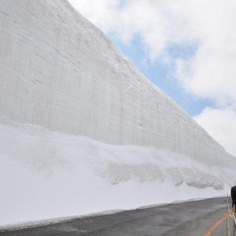 Прогулка вдоль снежной стены Татэямы