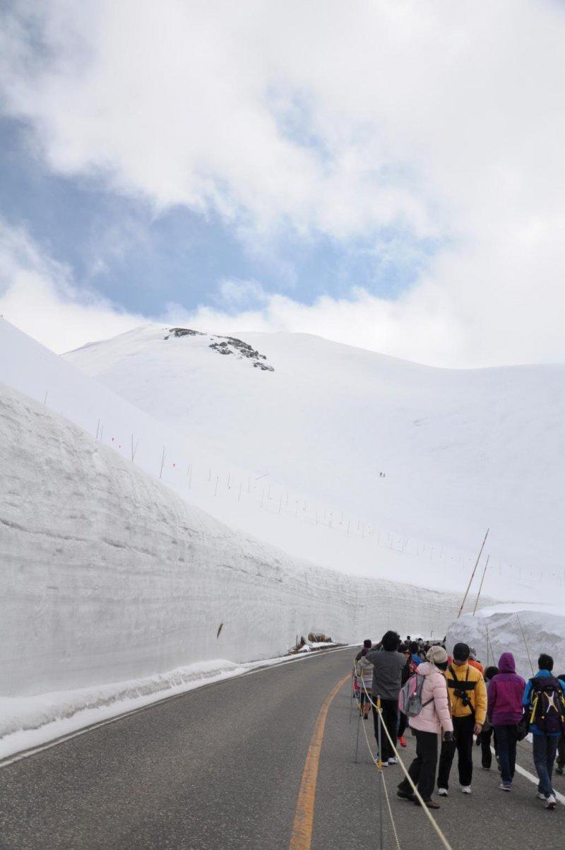 Tateyama's Snow Wall Walk 2020 [Cancelled] - April/June