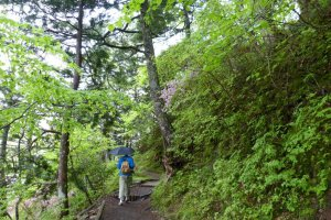 A round trip hike around Yunoko Lake takes about one hour.