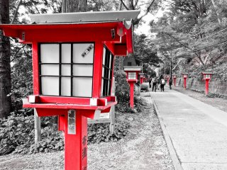 Situated along either side of the approach to Yakuo-in are the first of countless red lanterns