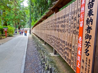 Along the winding approach to Shitenno-mon Gate you will see this long line of wooden tablets
