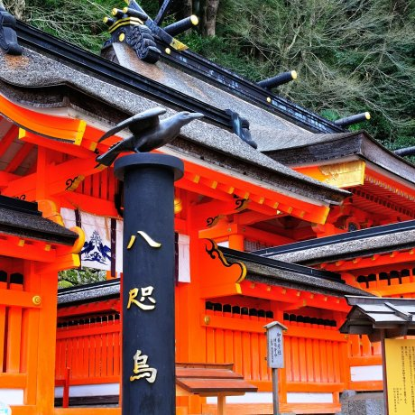 Nachi Taisha Shrine and Nachi Falls