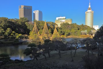 <p>Mihama-en is an oasis for urban life, as seen from the southern Arbor.</p>