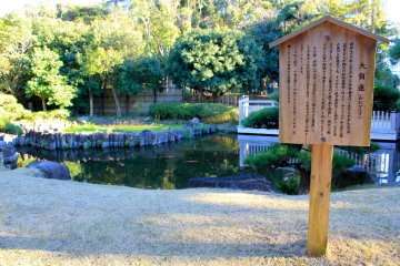 <p>In June, this pond will bloom with 2-million lotus flower plants</p>