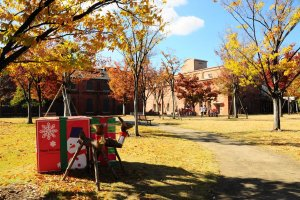 Lihat! Para rusa menjaga hadiah-hadiah Natal yang terserak di taman.
