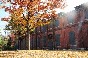 Daun-daun kemerahan musim gugur melengkapi bangunan bata merah di sore itu