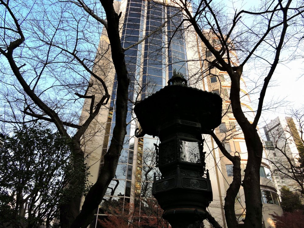 Bronze lantern and bare trees in shadow with the tall Prince Sakura Tower Tokyo in the background
