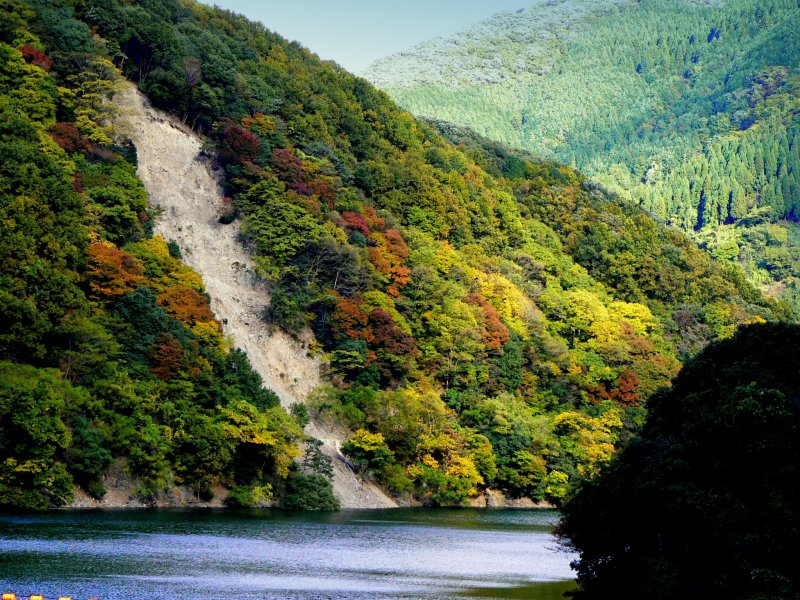 <p>A gravel slide into the river breaks up the autumn-hued trees</p>