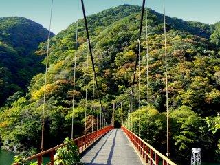 A suspension bridge over the river