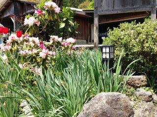 Yêu Miyama, nơi cổ tích của những ngôi nhà tranh đằng sau Kyoto