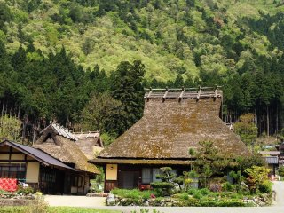 The thatched houses of Miyama are a photographers' delight