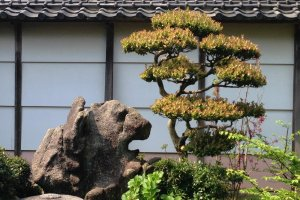 The manicured viewing garden is famous for its lion shaped rock statues, as well as the turtles that represent long life in Japanese culture.