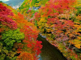 Throughout the year this gorge is an impressive sight, but even more so during the autumn season where the rich and vibrant colors bring everything to life!