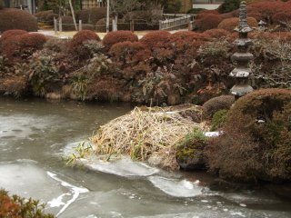 Frozen-over pond in Shoyoen Garden, Rinno-ji
