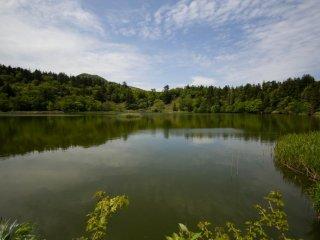 L'étang Himenuma est tranquille