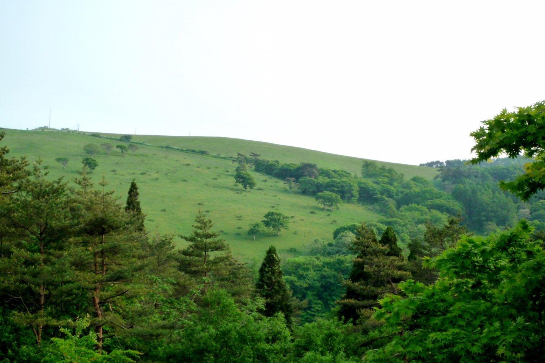 遊林ランド種山からの眺め