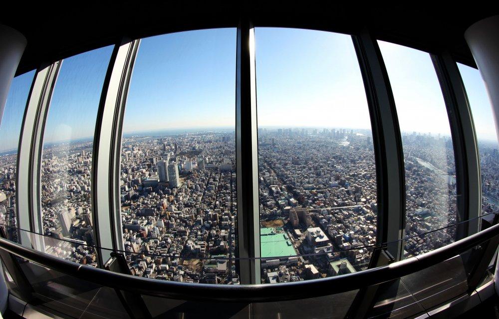Красивый вид из обсерватории, где вы можете увидеть просторы города Токио и помечтать, что вы можете летать, как птица.