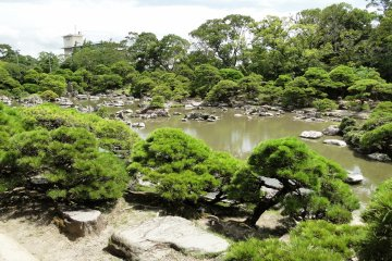<p>The beautiful Shotoen, the garden in the center of the property</p>