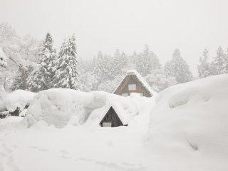 うっかりすると雪の中に腰まで脚が入ってしまう