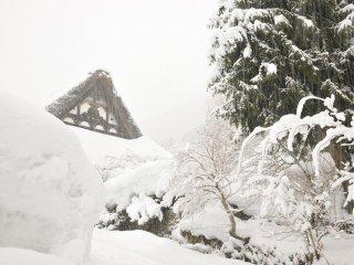 明善寺の本堂を妻側から撮る!勝手口は既に雪の壁になっている