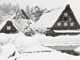 """この景色を目の当たりにして思う""""やはり冬に来て良かった!"""""""
