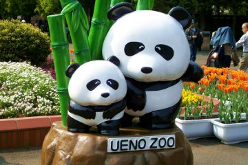 <p>Возле входа в зоопарк</p>