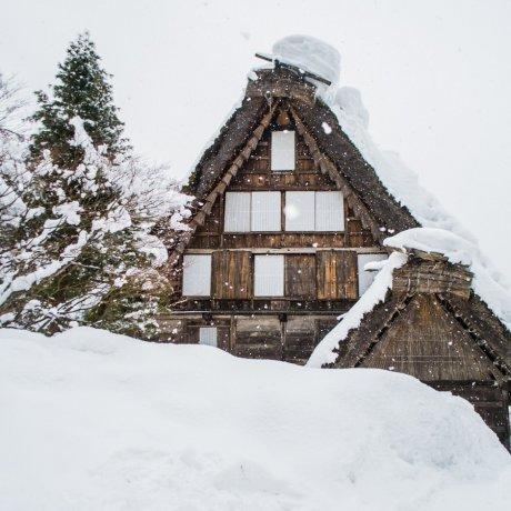 Cảnh mùa đông ở làng dân gian Hida