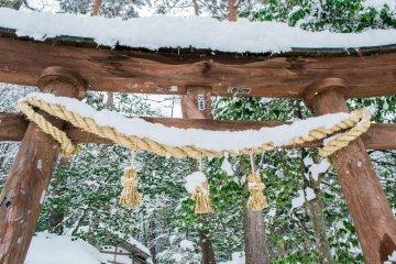 <p>Love this Torii gate.</p>