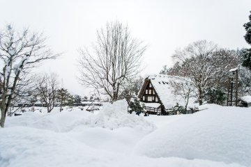 <p>Walking in a Winter Wonderland.</p>