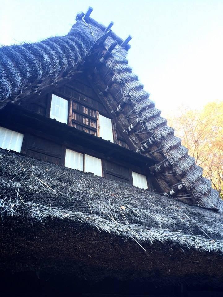 <p>Gasshō Style house</p>