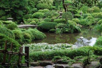 The beautifully landscaped garden of the Honma's Seienkaku Residence