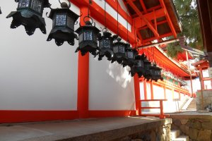 The bronze lanterns of Kasuga Taisha