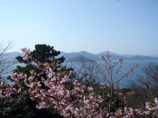 La montagne Shizuki vu du volcan Kasa