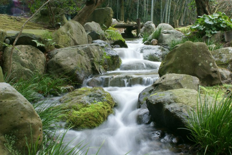 <p>A cascading stream in the upper part of the Chofu&nbsp;Teien</p>