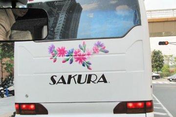 <p>Такое впечатление, что цветы сакуры присутствуют везде вокруг нас, когда мы проезжаем по улицам Токио - даже на окружающих автомобилях и автобусах.</p>
