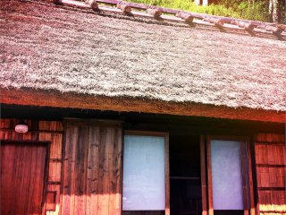 A snapshot of one of the thatched roof cottages in the area