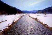 Datangnya Musim Semi di Fukui