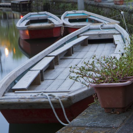 Along Yanagawa's Famous Canals