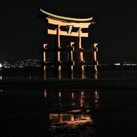 Mysterious Miyajima at Night