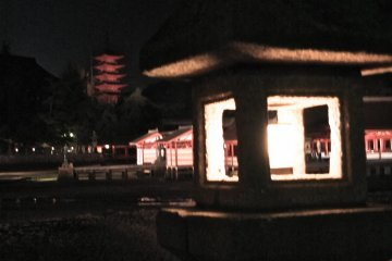 <p>The shore, lined with many beautiful lanterns</p>